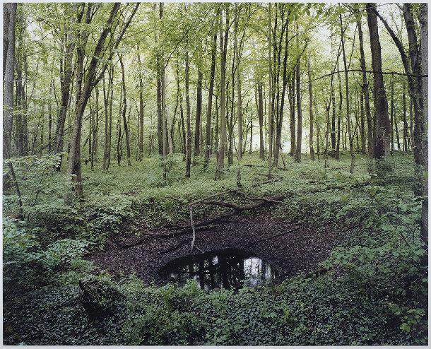 kraters-bossen-duitsland-2