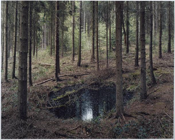 kraters-bossen-duitsland-3