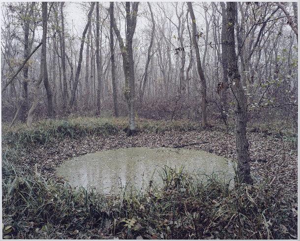 kraters-bossen-duitsland-6