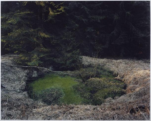 kraters-bossen-duitsland-7
