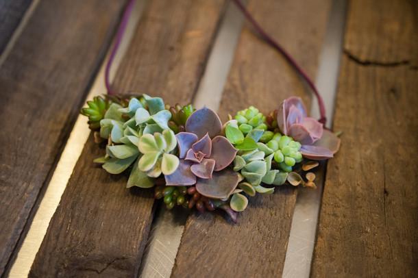 sieraden-vetplanten-6