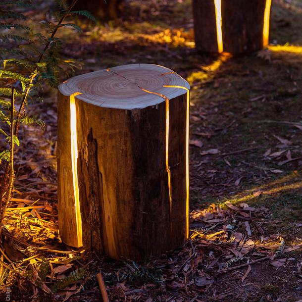 boomstammen-lampen-2