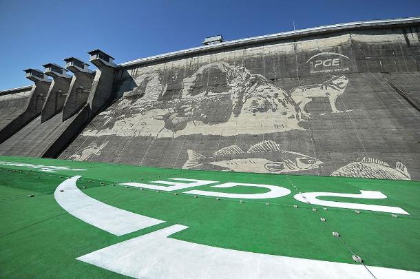 ecologische-muurschilderingen-2