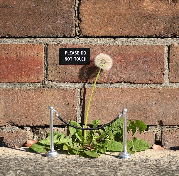 borden-stad-street-art-2