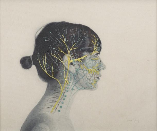 anatomie-borduren-fotos-4