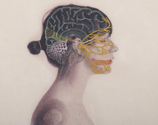 anatomie-borduren-fotos-6