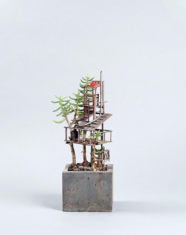 boomhutten-kamerplanten-3