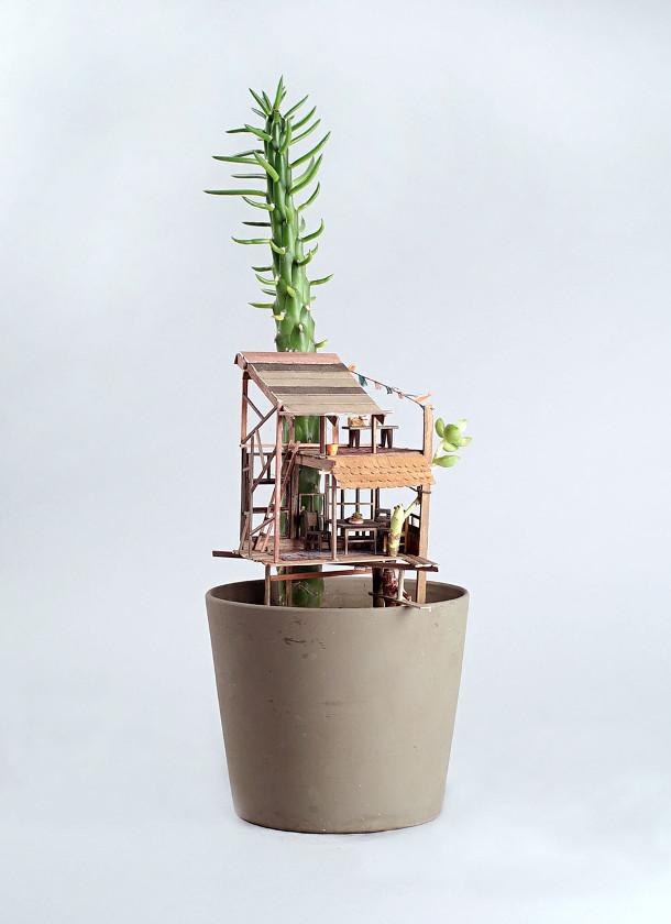 boomhutten-kamerplanten-4