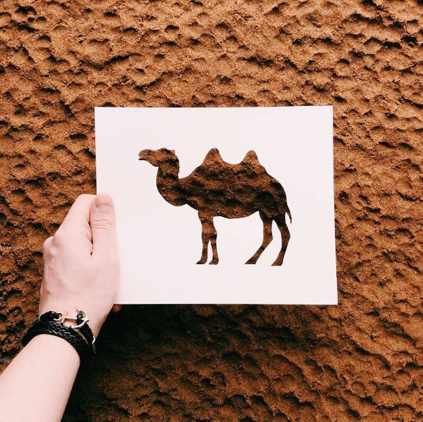 papieren-silhouetten-dieren-natuur6