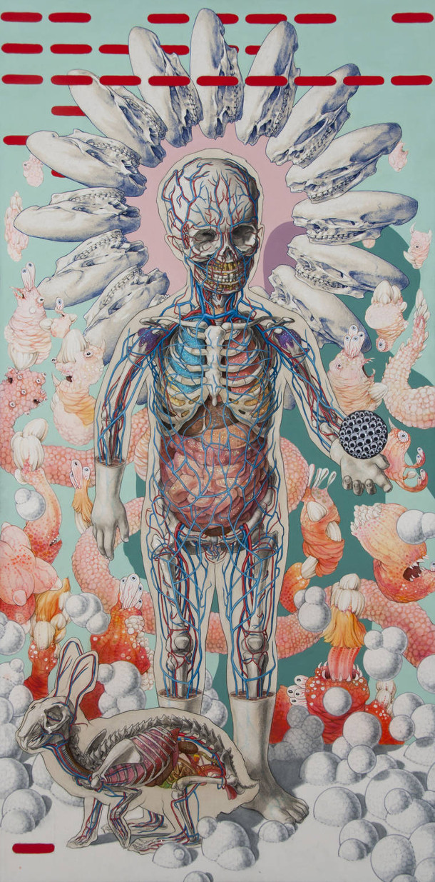 anatomische-creaties-6