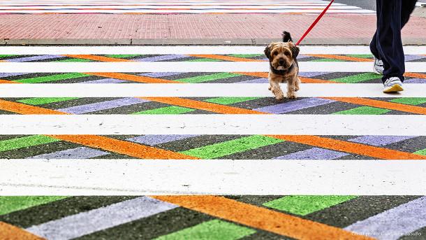 kleurrijke-zebrapaden-2