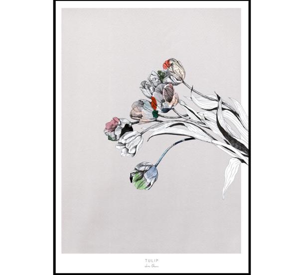 illustraties-lissa-thimm-5