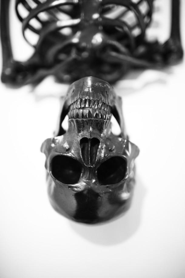 skelet-grafiet-4