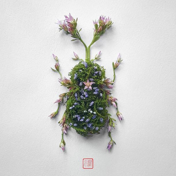 bloemen-insecten-2