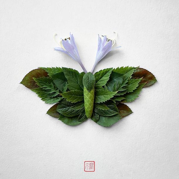 bloemen-insecten-6