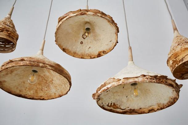 paddenstoelen-interieur-2