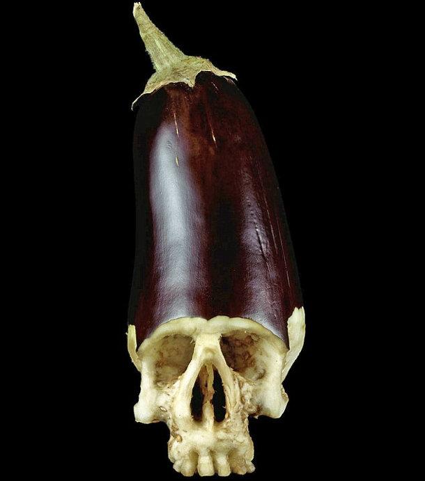 schedels-fruit-groente-4