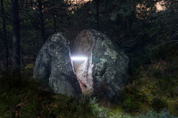 nachtelijk-verlicht-bos-3