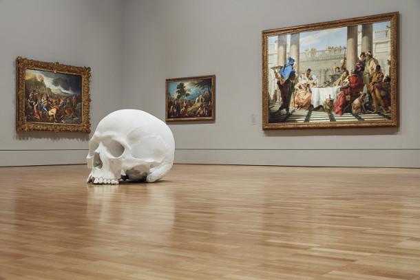 schedels-museum-7