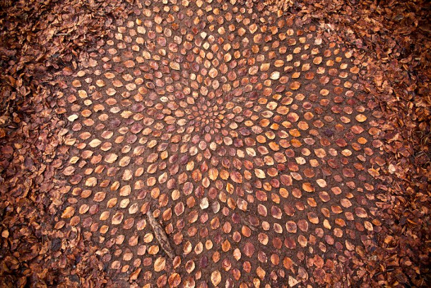 mandalas-bladeren-stenen-5