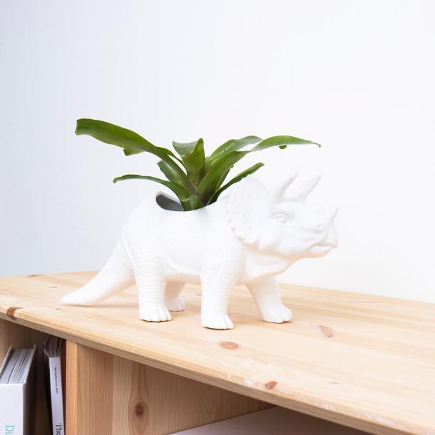 plantenpotten-dinosaurussen-3