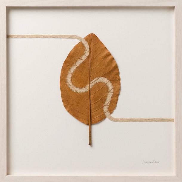 haken-gevonden-bladeren-2