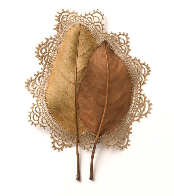 haken-gevonden-bladeren-3
