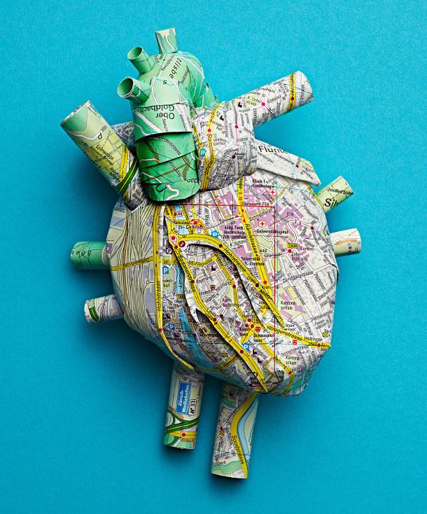 menselijke-anatomie-stadsplattegronden-3