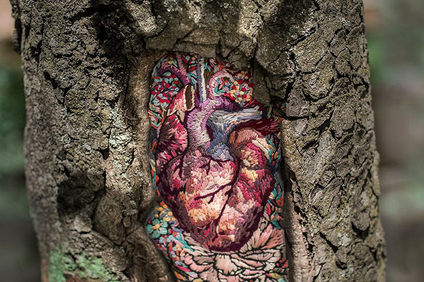 borduren-littekens-bomen-2