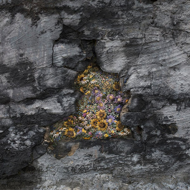 borduren-littekens-bomen-3