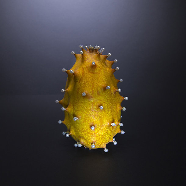 fotografie-verboden-vruchten-3