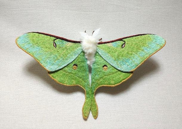 vilten-motten-vlinders-2