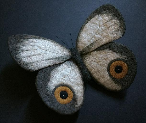 vilten-motten-vlinders-4