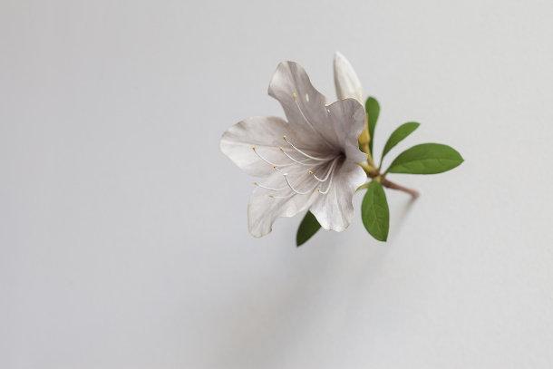 houten-bloemen-2