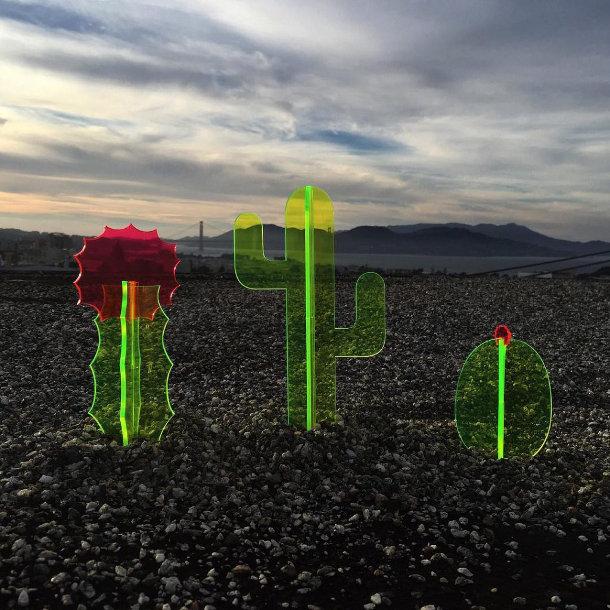 fluorescerende-acryl-cactussen-3