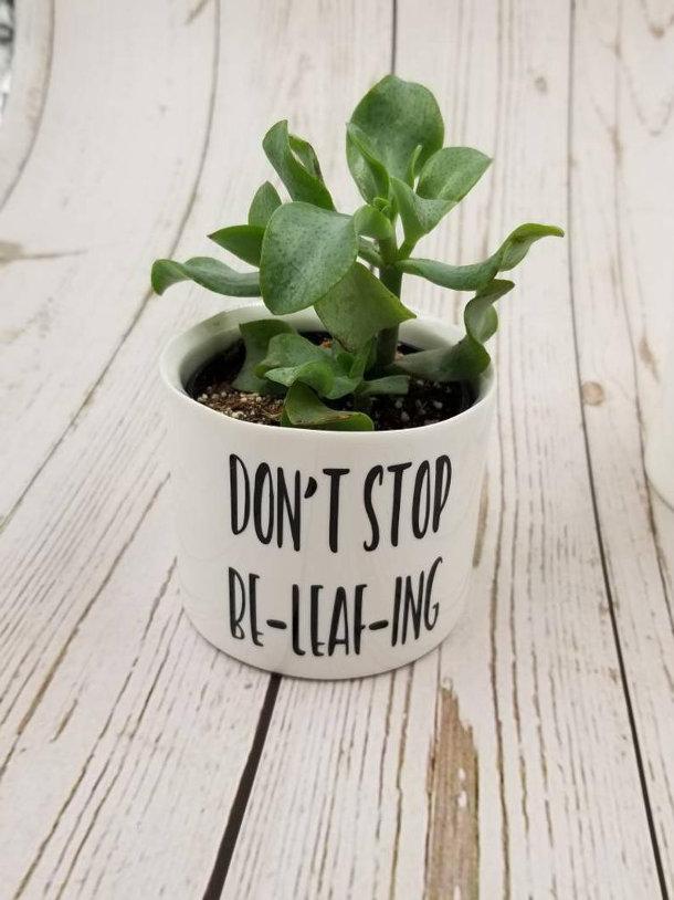 grappige-kleine-plantenpotten-2