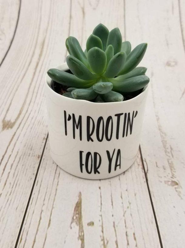 grappige-kleine-plantenpotten-4