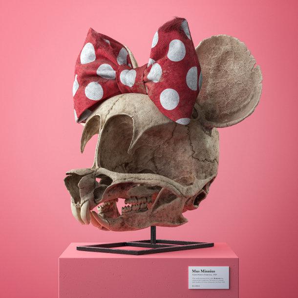 schedels-stripfiguren-3