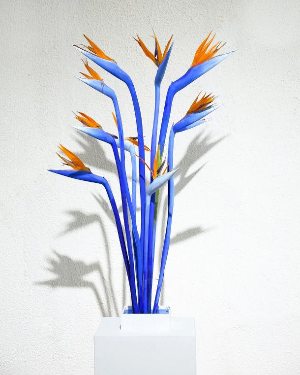 schilderachtige-bloemen-5