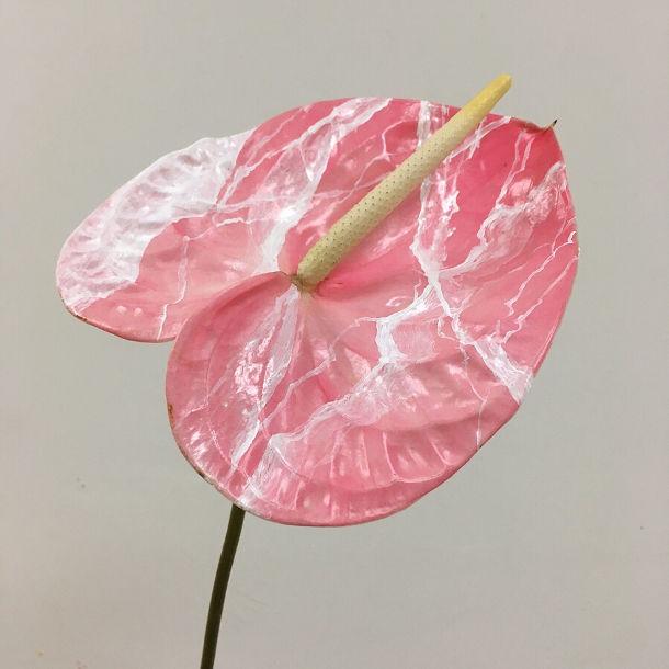 schilderachtige-bloemen-6